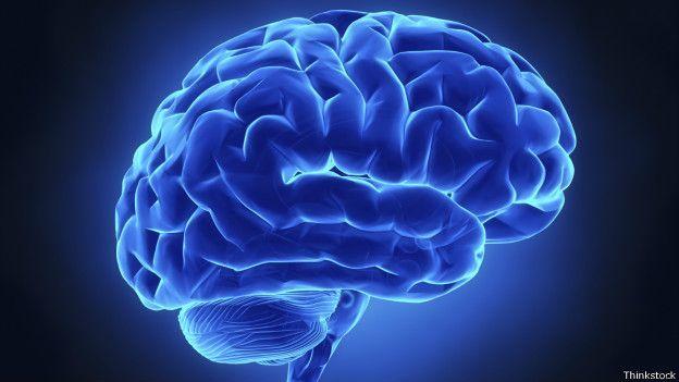 ¿Cómo registra el dolor el cerebro? -