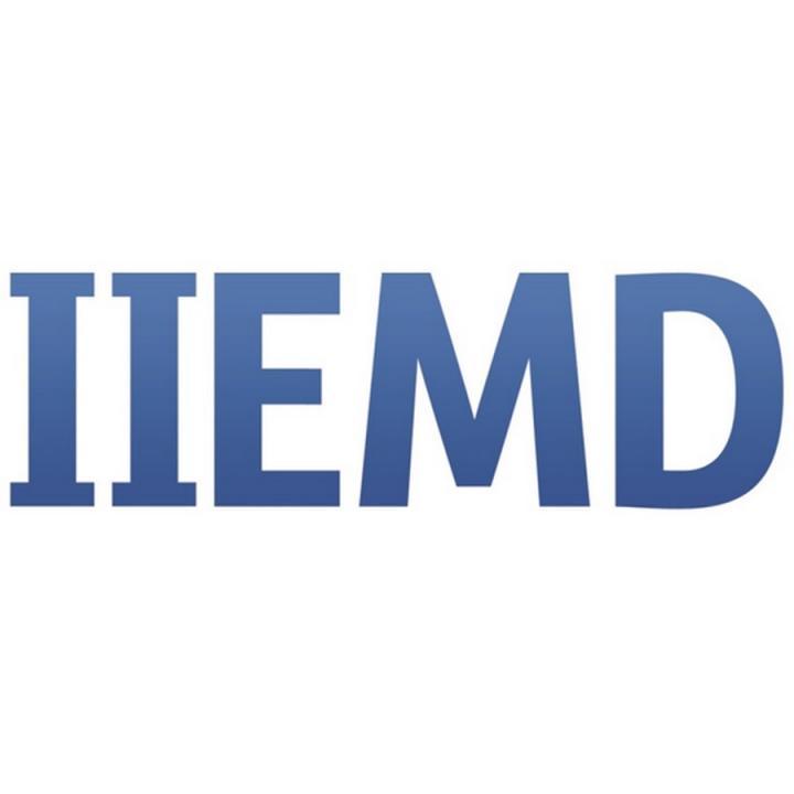 Instituto Internacional Español del Marketing Digital